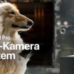 iPhone 11 Pro (Hund – Drei-Kamera-System)